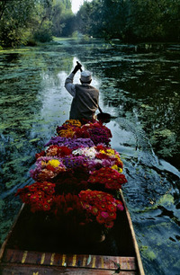 Stevemccurry_1